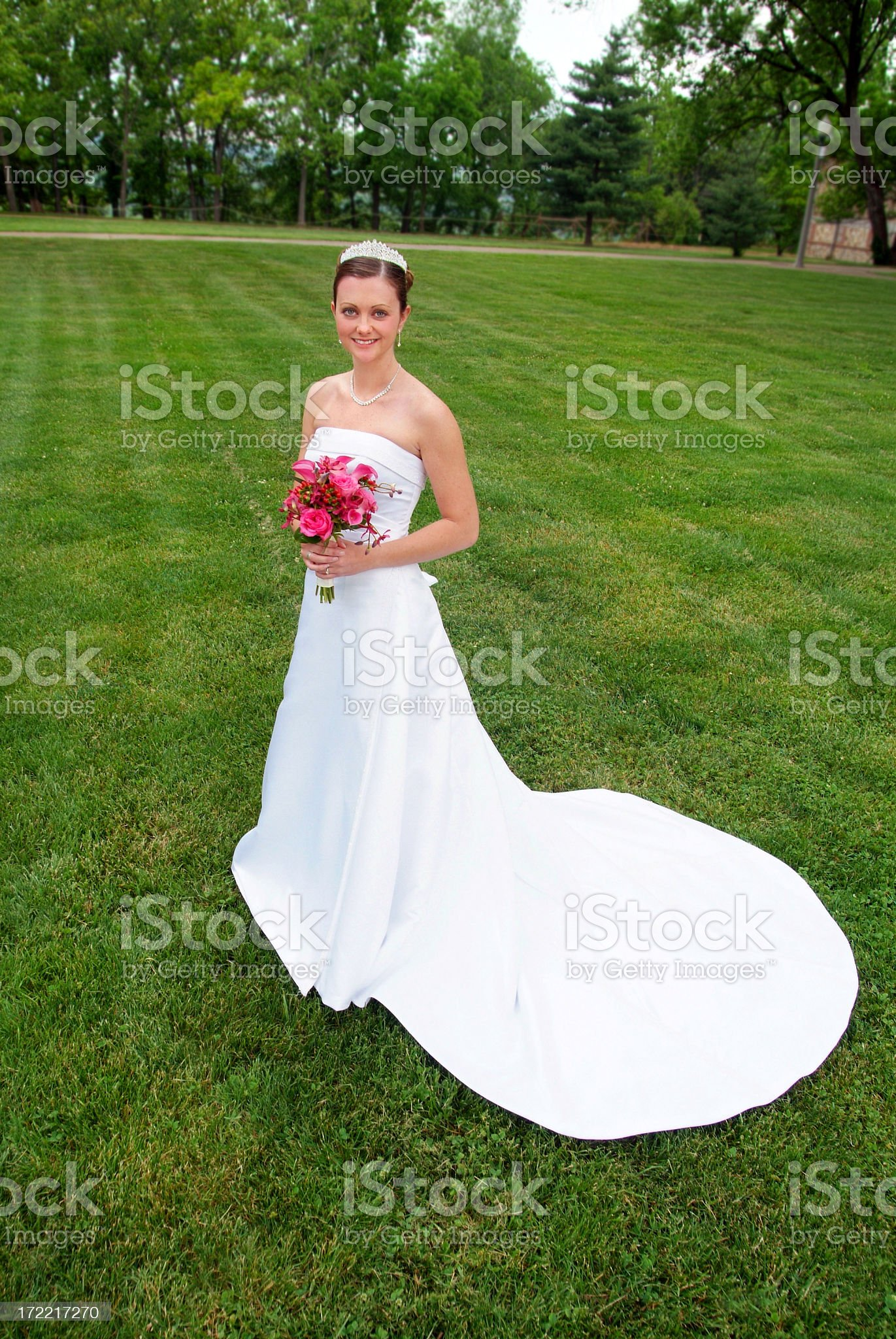 Beautiful Bride in her Gown Standing on a Green Lawn royalty-free stock photo