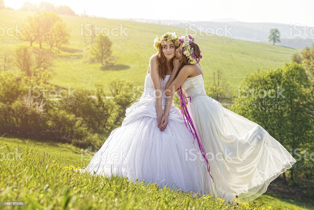 2 beautiful bride in the morning , idyllic meadow , friendship symbol stock photo