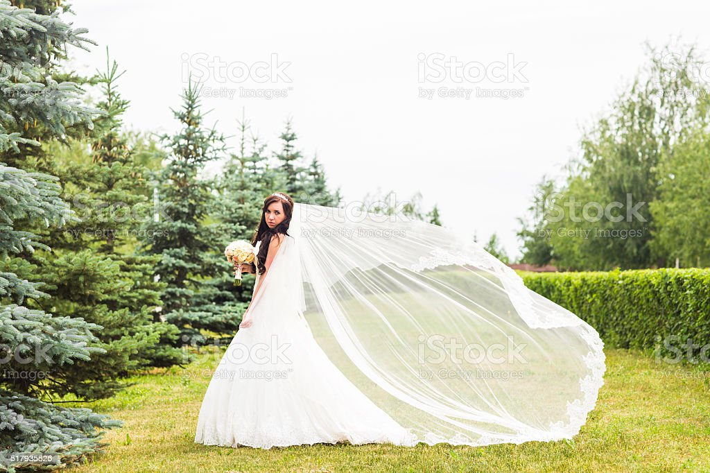 Beautiful bride outdoors in a park stock photo