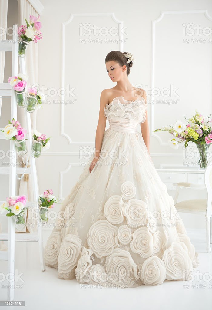 Beautiful bride. stock photo