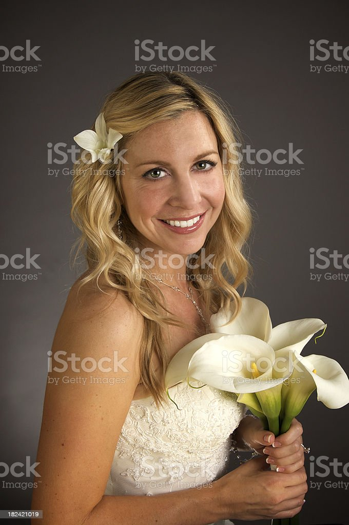 Beautiful Bride Portrait royalty-free stock photo