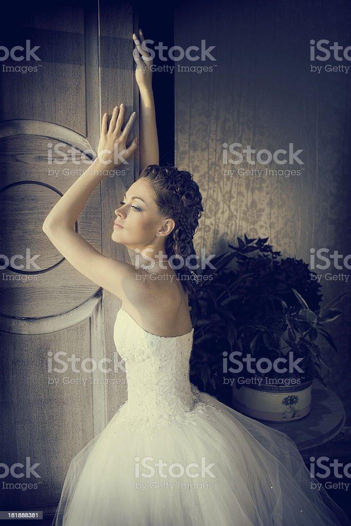 Beautiful Bride  Standing in the Wonderful Wedding Dress  . royalty-free stock photo