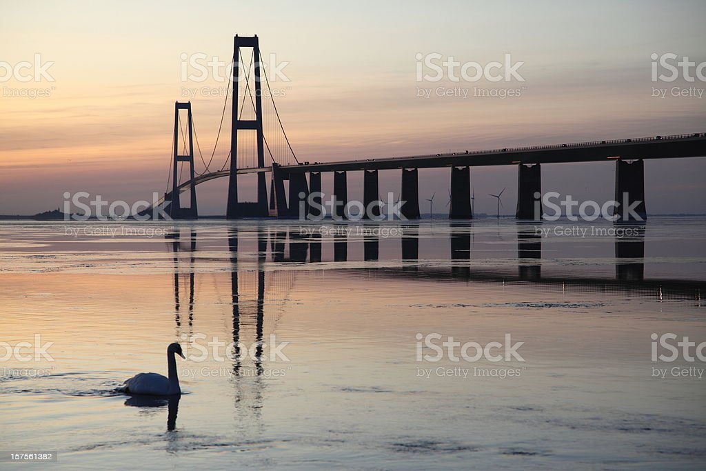 A beautiful bridge at sunset with a swan in the water royalty-free stock photo