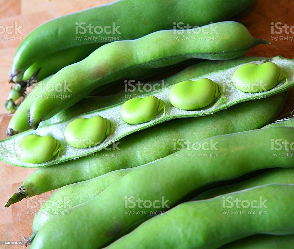 Beautiful broad beans royalty-free stock photo