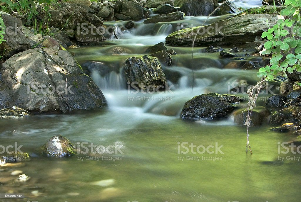 Beautiful brook in the forest royalty-free stock photo