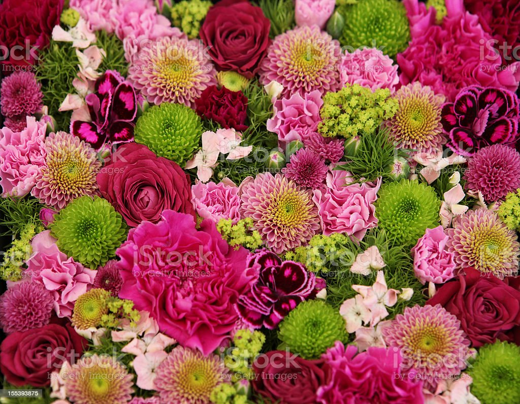 Beautiful bunch of colorful flowers stock photo