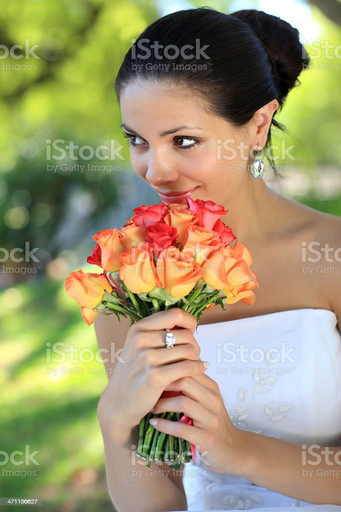 Beautiful bunch of roses royalty-free stock photo