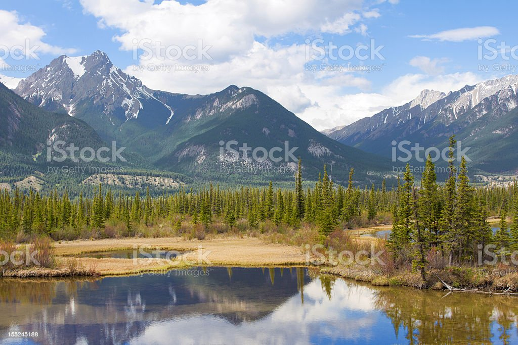 Beautiful Canadian Landscape with Mountains, Lake and Fir Trees stock photo