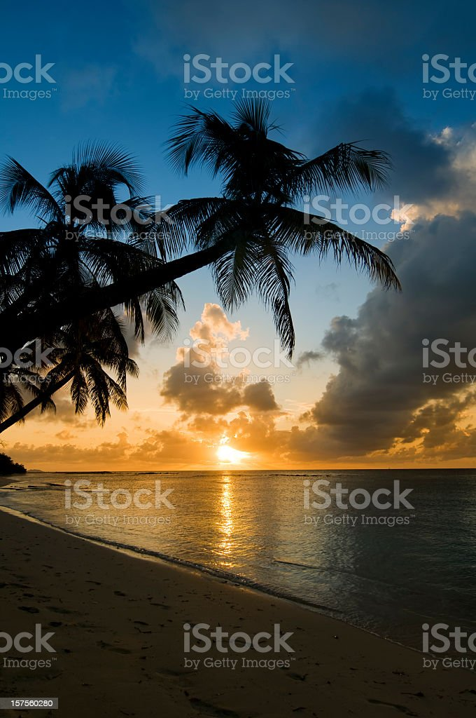 Beautiful Caribbean Sunset over the sea and palm silhouette stock photo