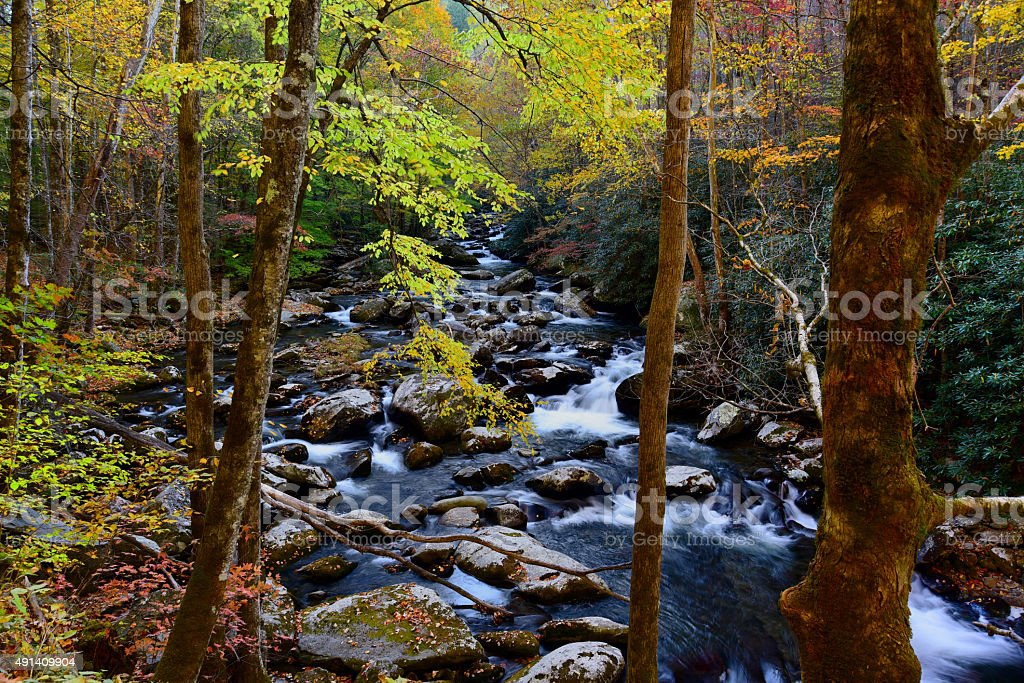 Beautiful Cascade in the Great Smoky Mountains stock photo