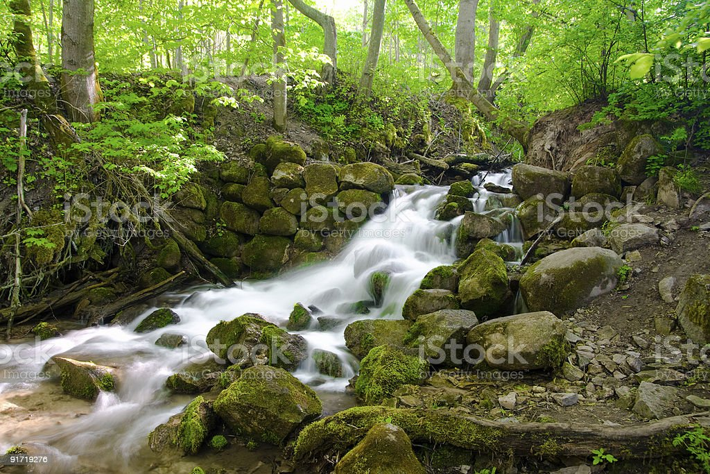 beautiful cascade waterfall in green forest royalty-free stock photo