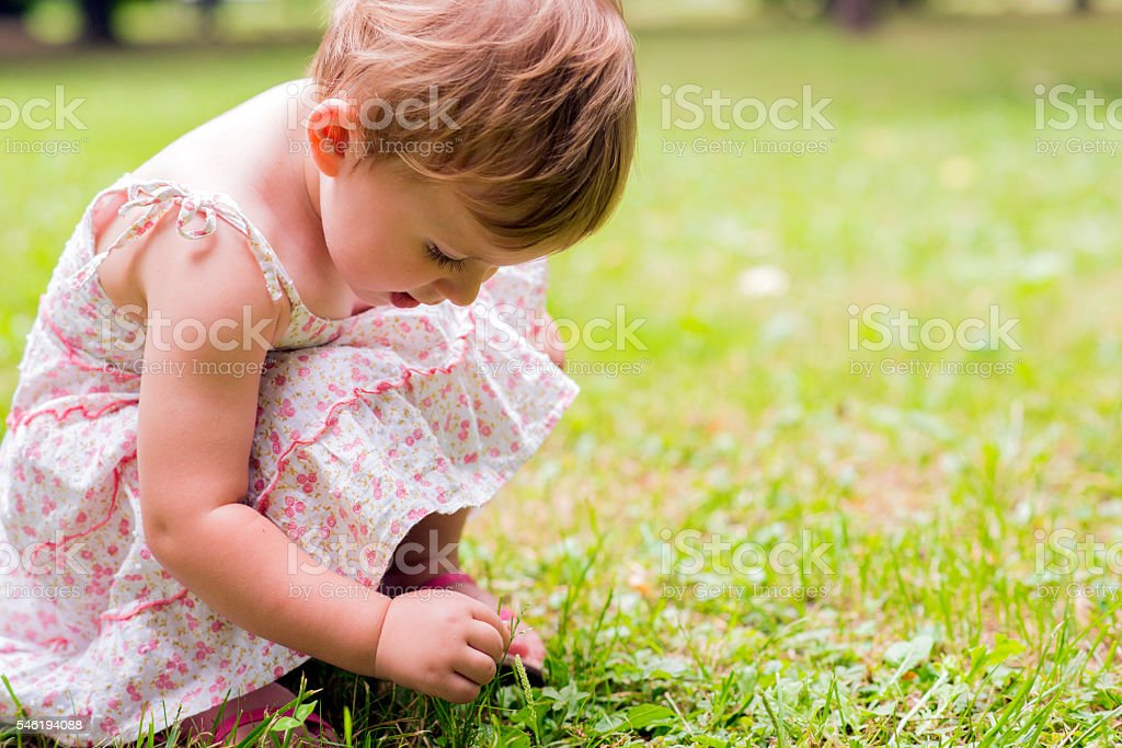 Beautiful child picks flowers on a spring green meadow stock photo