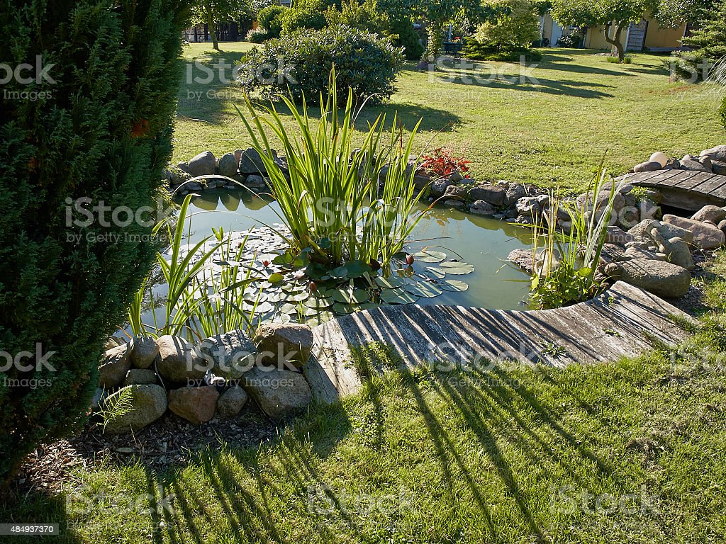 Beautiful classical garden fish pond gardening background stock photo