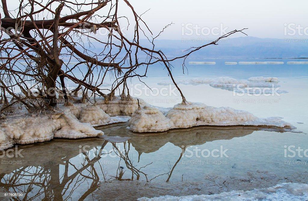 Beautiful coast of the Dead Sea . stock photo