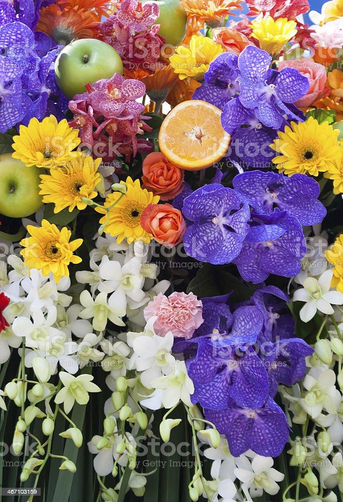 Красивые Разноцветные цветы фон Стоковые фото Стоковая фотография