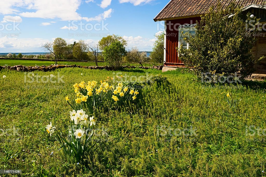 Beautiful country garden royalty-free stock photo