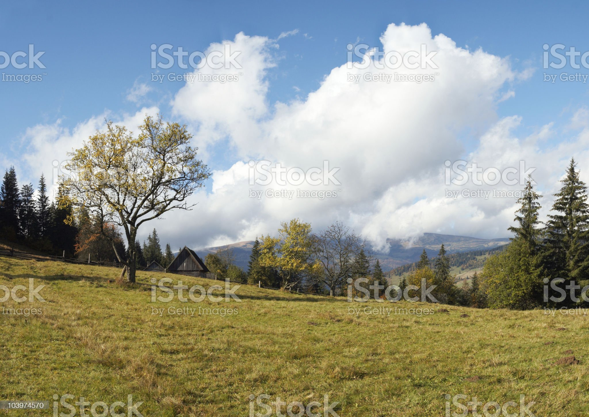 Beautiful country morning royalty-free stock photo