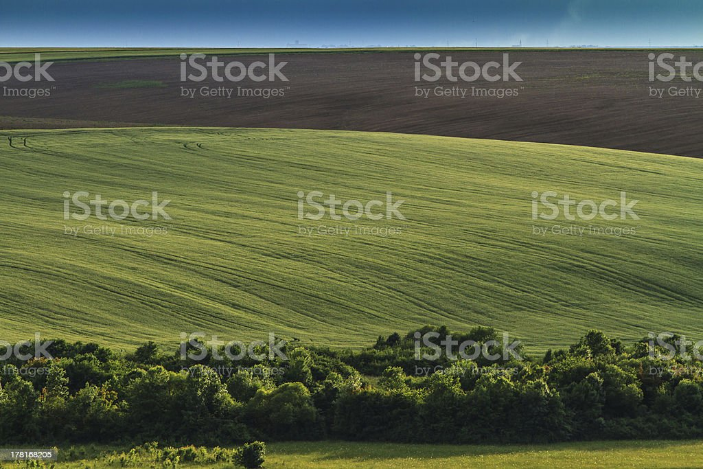 Beautiful countryside in summer royalty-free stock photo