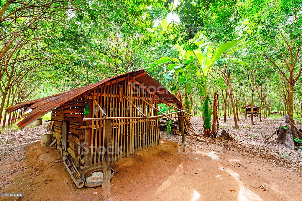 Beautiful countryside landscape, Northeast, Thailand stock photo