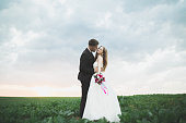 Beautiful couple in field, Lovers or newlywed posing on sunset