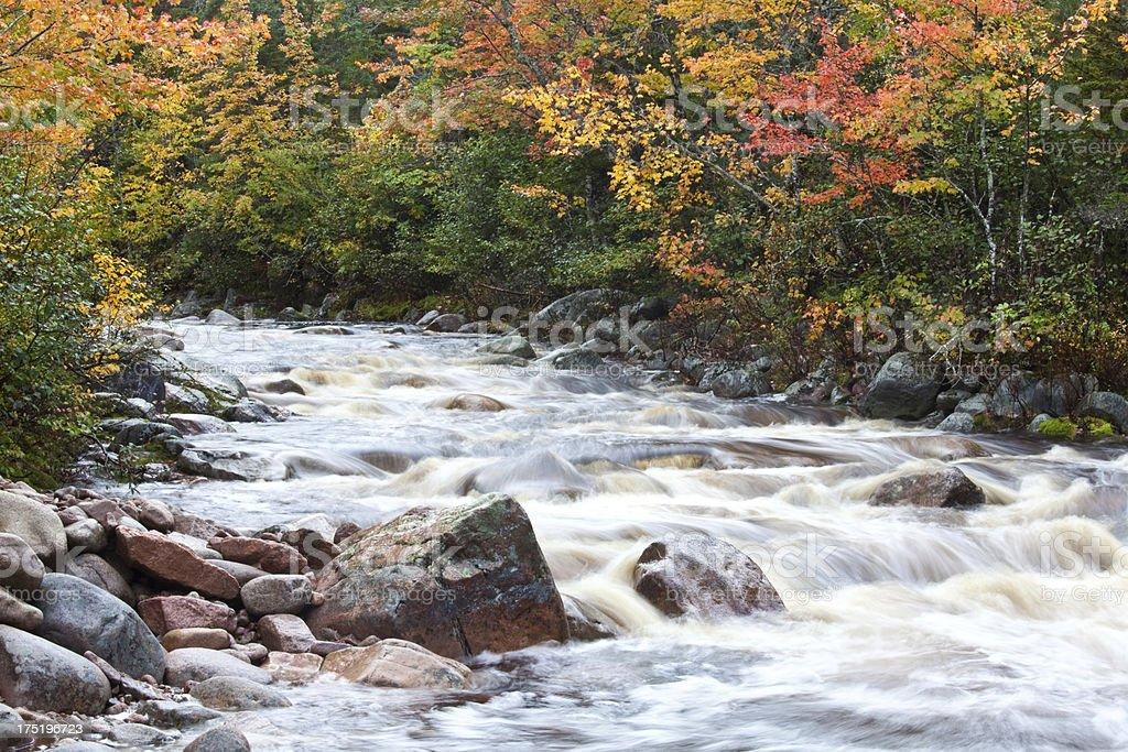 Beautiful Creek in the Fall royalty-free stock photo