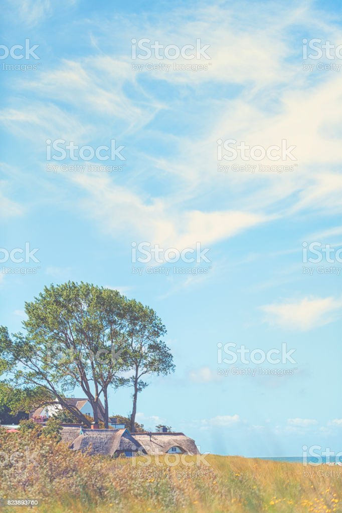 Beautiful day at the beach of Baltic Sea / Darss / Ahrenshoop/ Germany stock photo