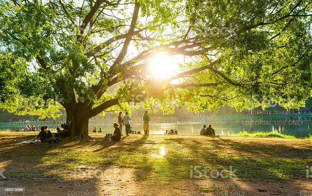 Beautiful day in Ibirapuera Park in Sao Paulo, Brazil stock photo