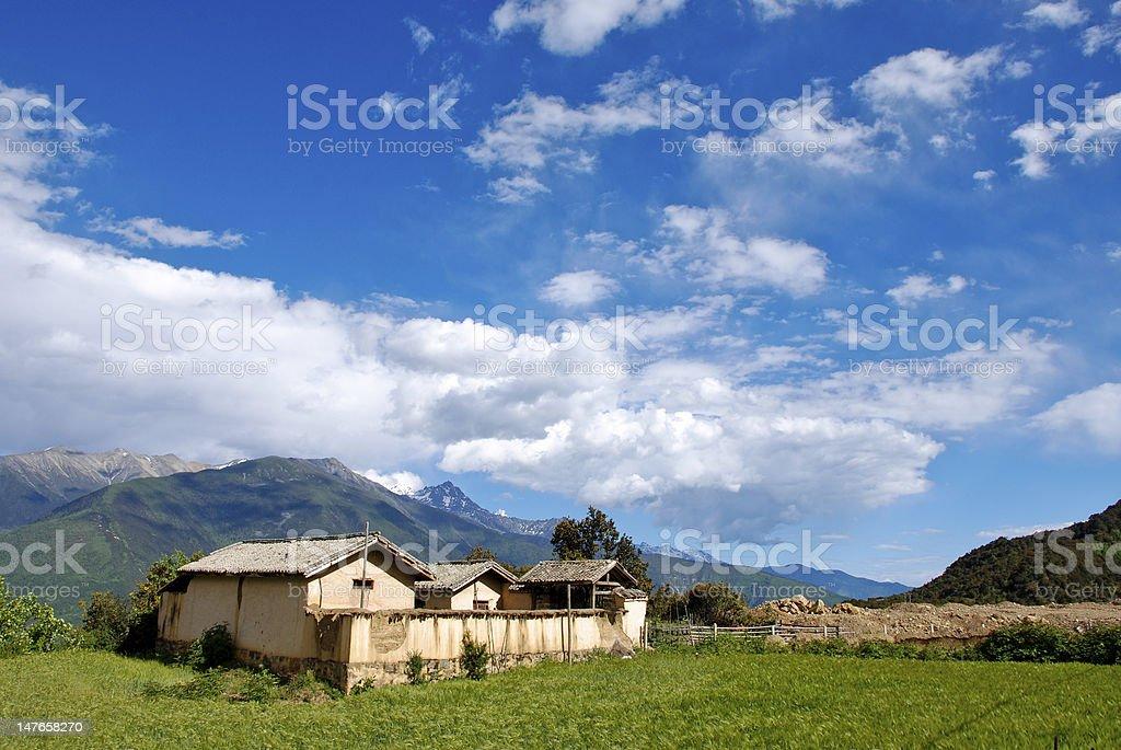 Beautiful day on a farm stock photo