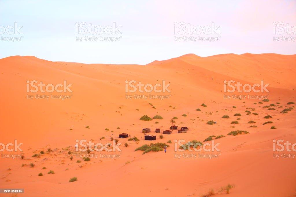 Beautiful  desert in sahara stock photo