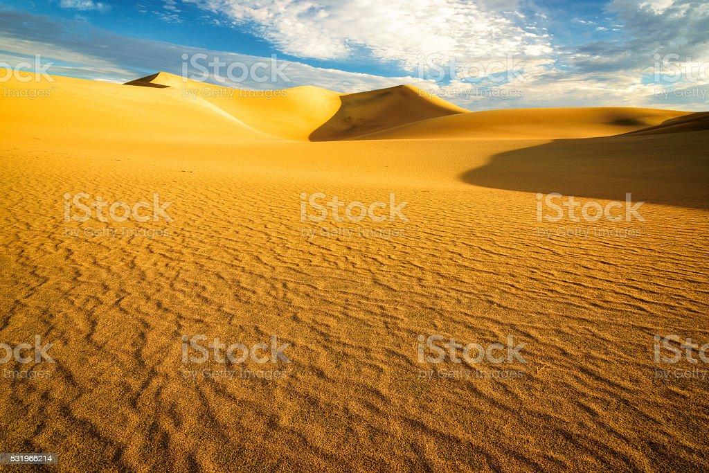 Beautiful Desert Landscape stock photo