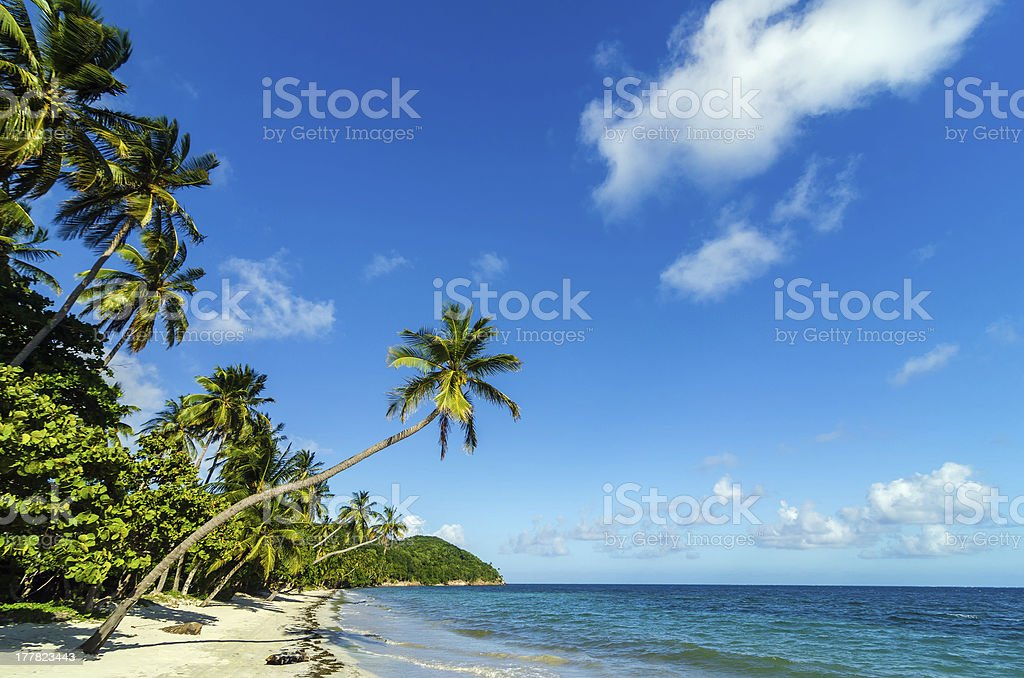 Beautiful Deserted Beach royalty-free stock photo