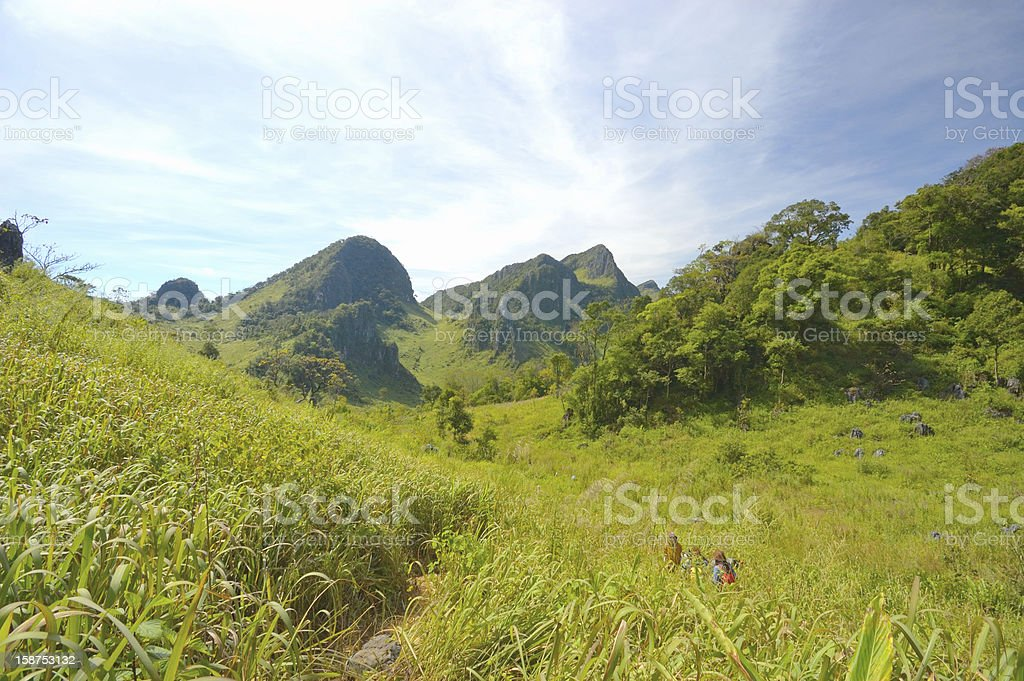 Beautiful  Doi Luang Chiang Dao  mountains royalty-free stock photo