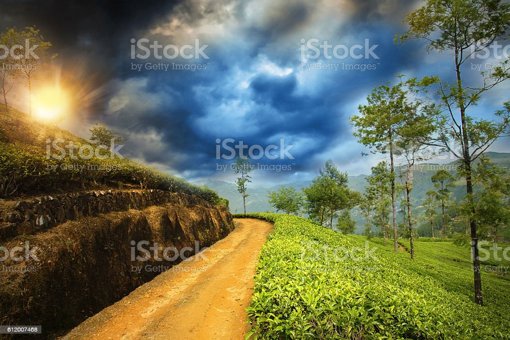 beautiful dramatic sunset in countryside stock photo