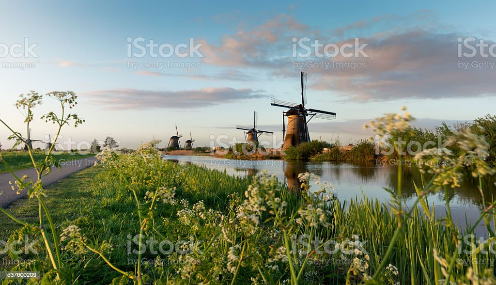 Beautiful dutch windmills landscape at sunrise stock photo
