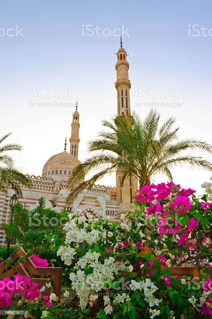 Beautiful Egypt mosque stock photo