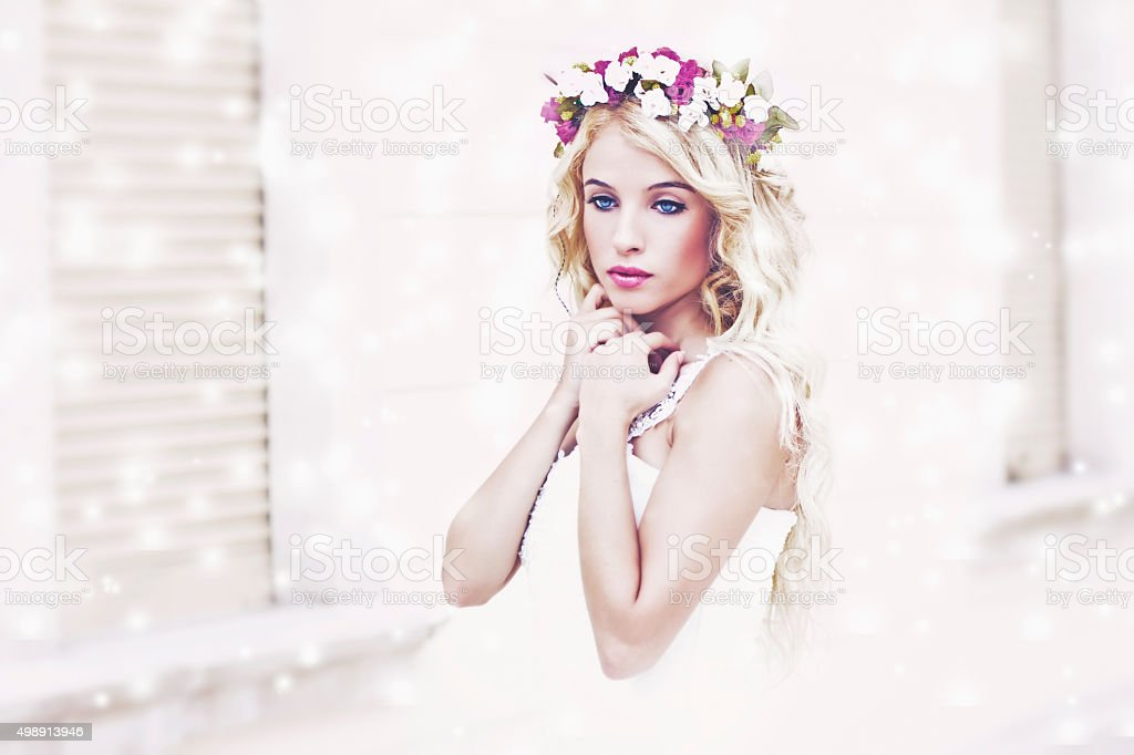 Beautiful Elegant Bride stock photo