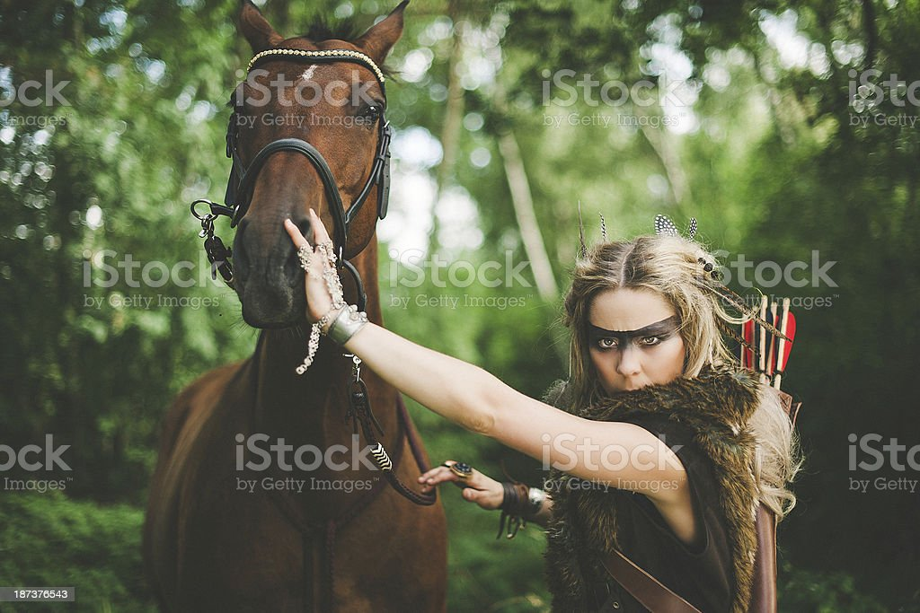 Beautiful elf warrior princess with her horse stock photo