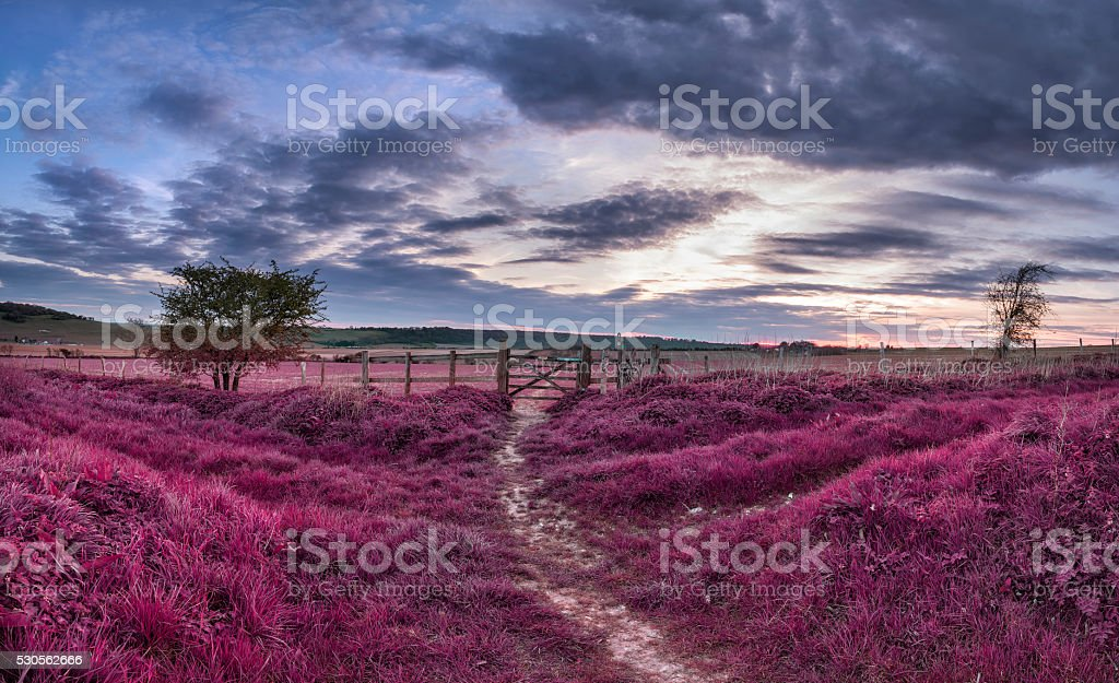 Beautiful English countryside landscape over fields at sunset wi stock photo