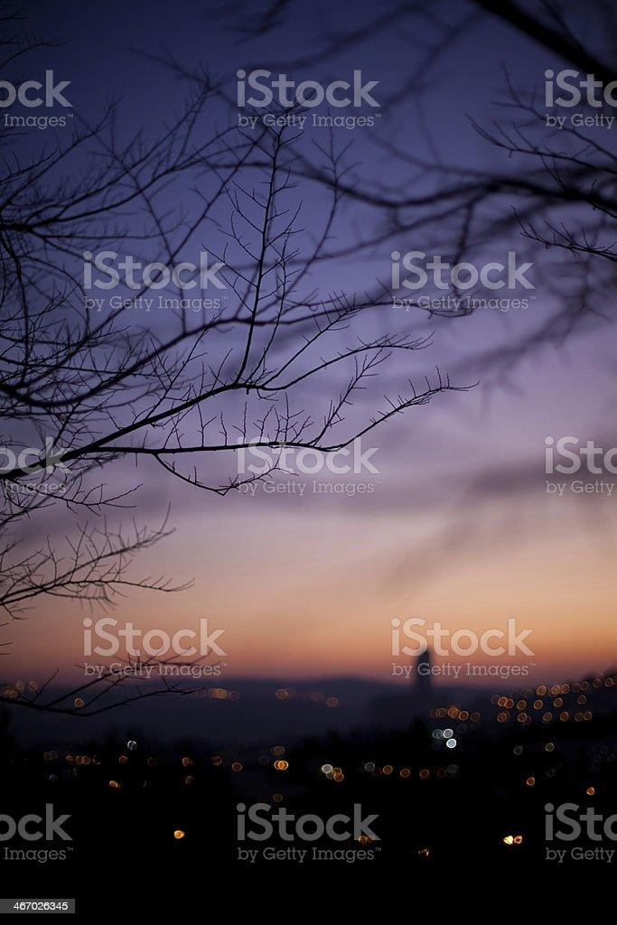 Beautiful Evening royalty-free stock photo