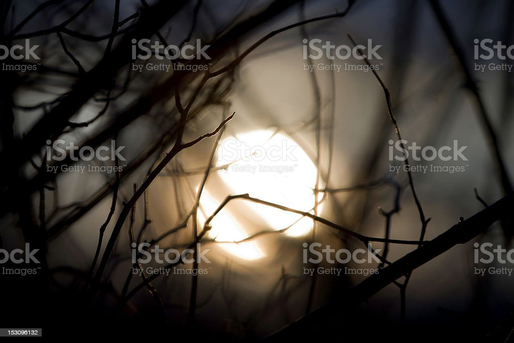 beautiful evening sunset royalty-free stock photo