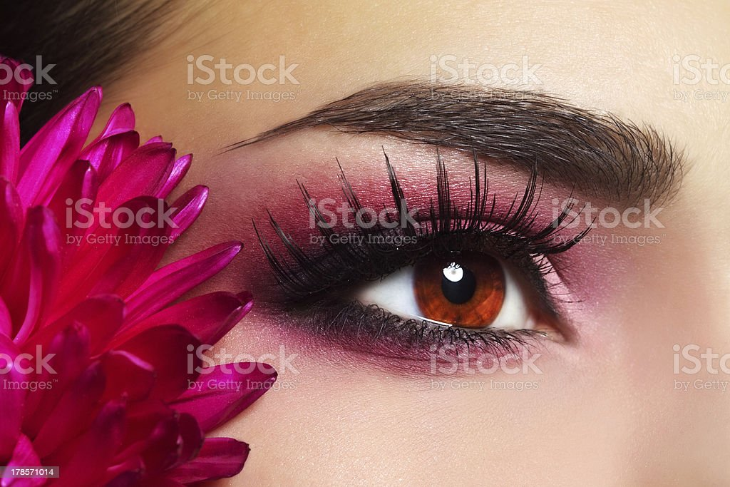 Beautiful Eye Makeup with Aster Flower royalty-free stock photo