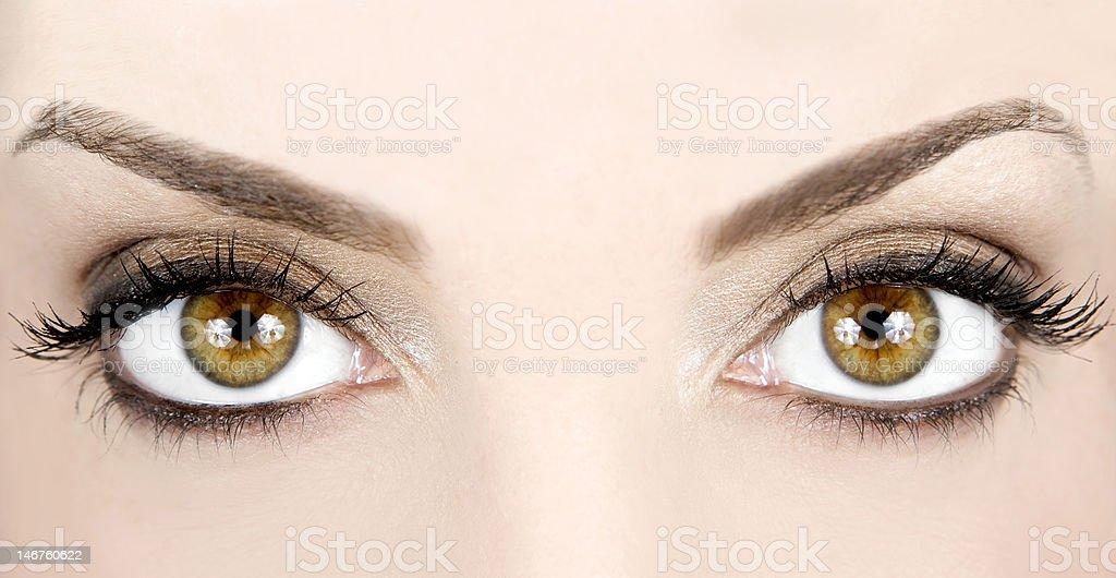 Hermosos ojos foto de stock libre de derechos