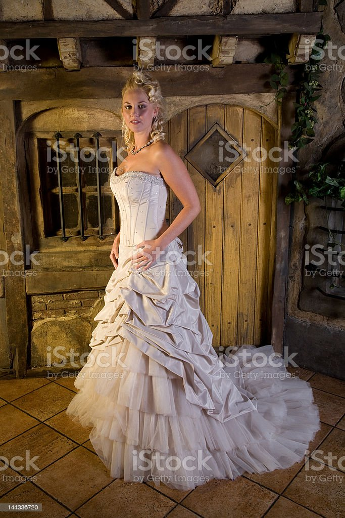 Beautiful fairytale royalty-free stock photo