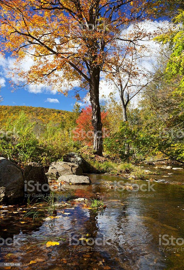 Beautiful Fall stream royalty-free stock photo