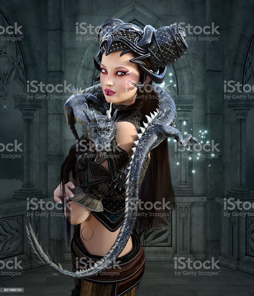 Beautiful fantasy warrior with dragon vector art illustration