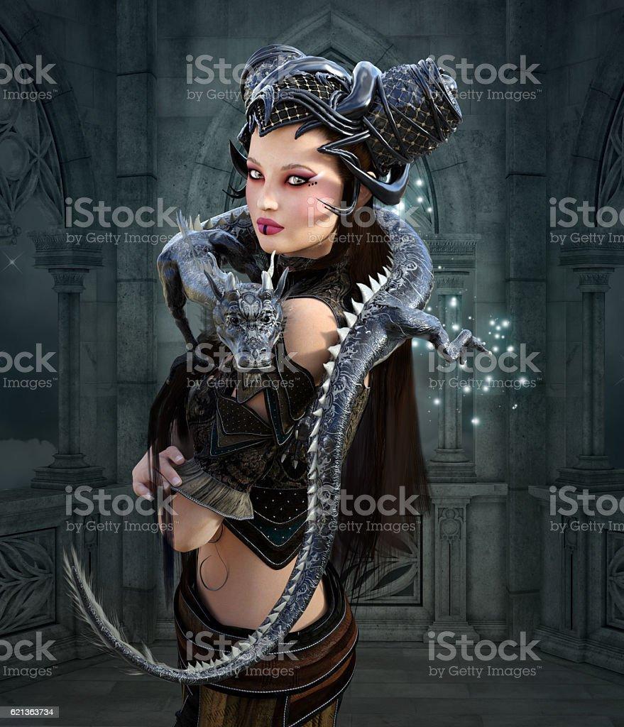 Beautiful fantasy warrior with dragon stock photo