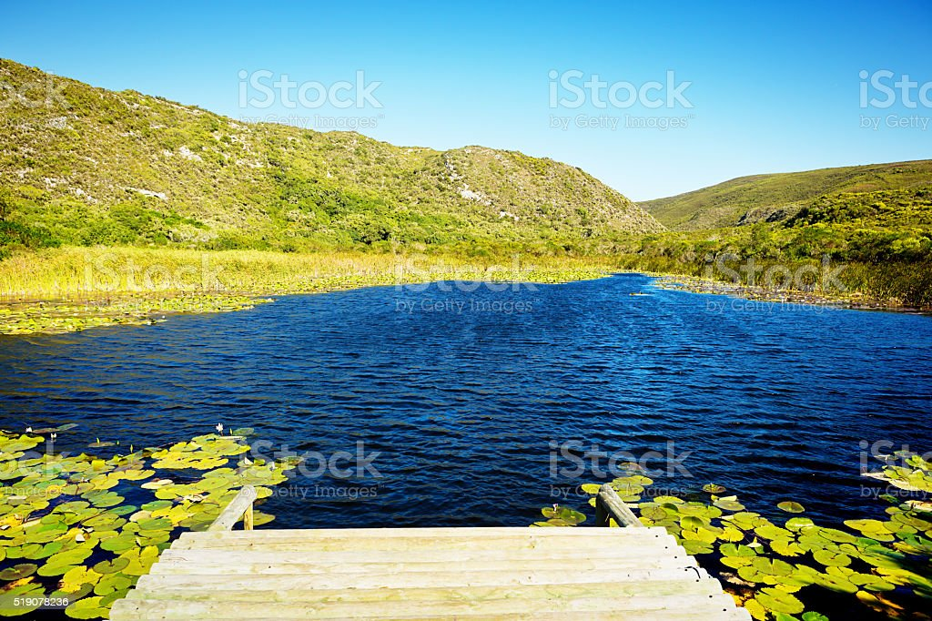 Beautiful farm pond, remote and relaxing stock photo