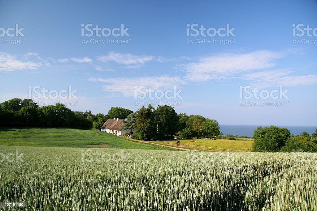 Beautiful farmland, old house and sea in Southern Jutland, Denmark royalty-free stock photo