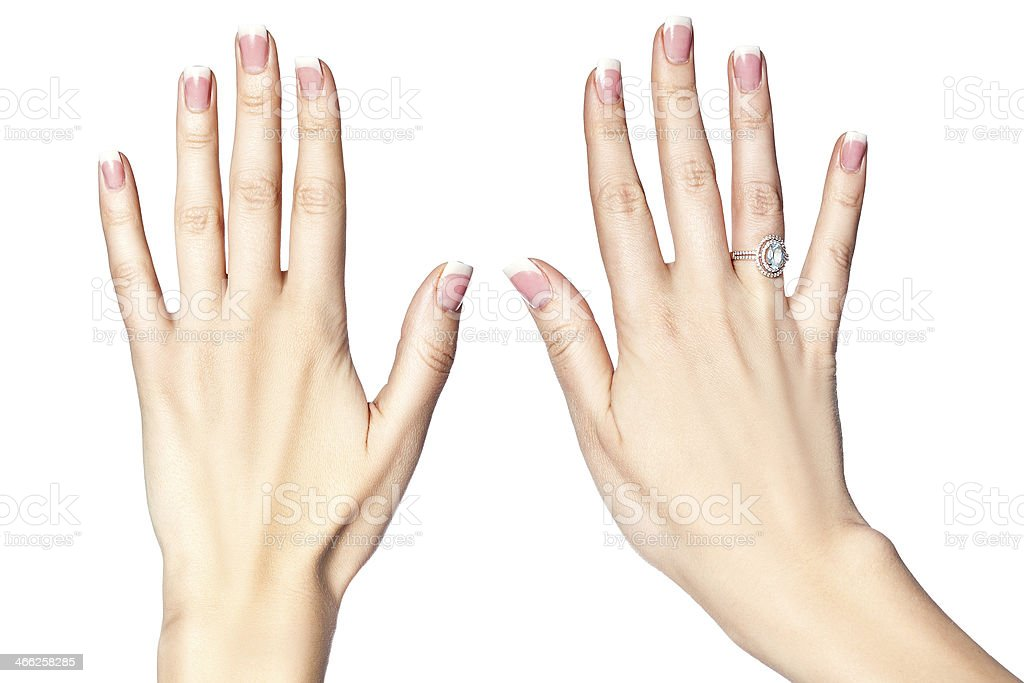 Beautiful female hands on a white background. stock photo