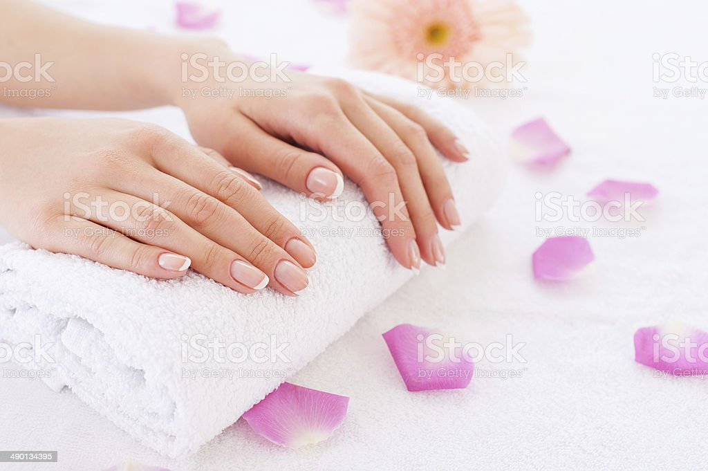 Beautiful female hands. stock photo